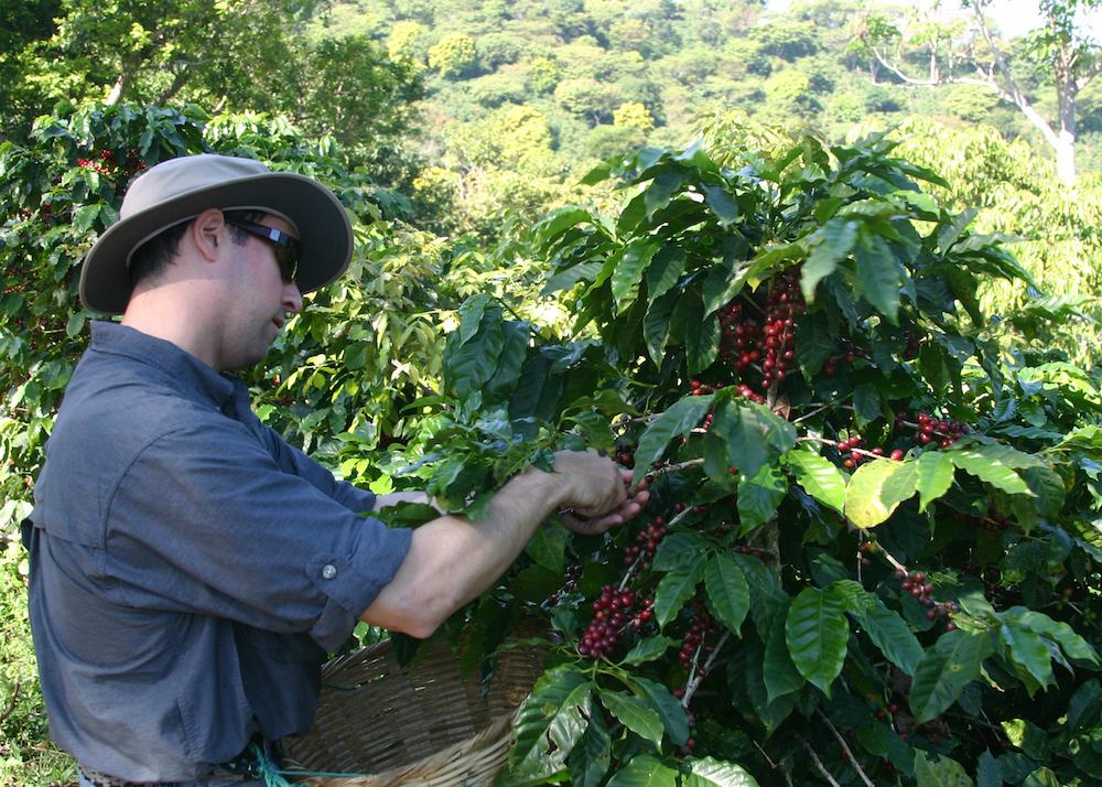 editEl Salvador - Coffee Trip 177
