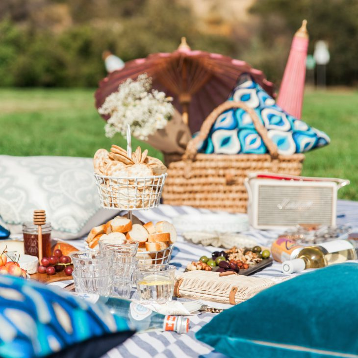 6 Picnic Essentials From Molly My