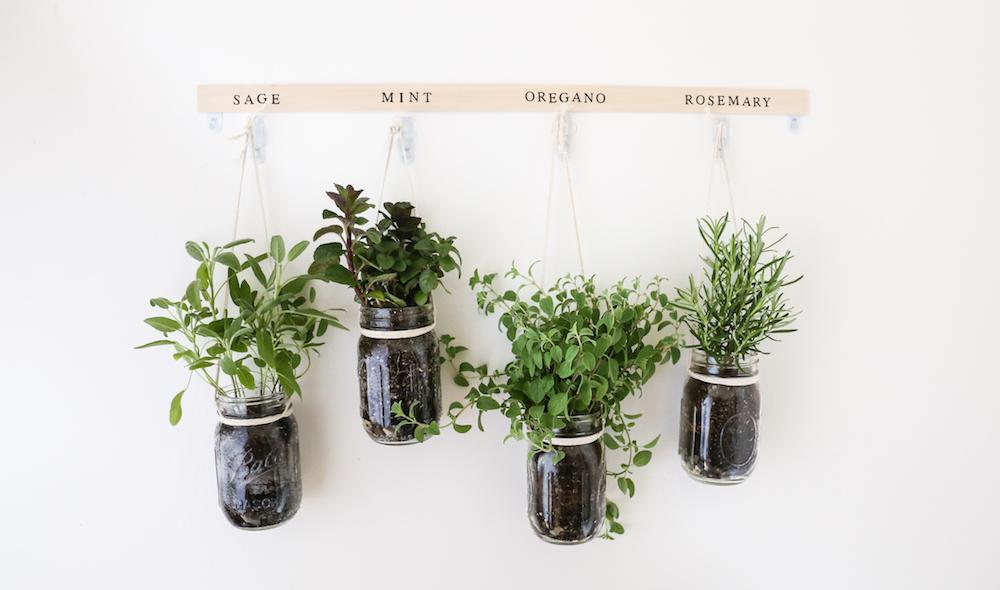 Spring DIY: Hanging Mason Jar Herb Garden